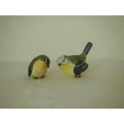 Vogel Sunny, Paar